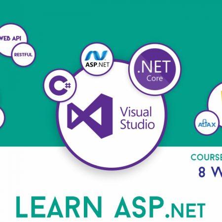 Web Development in ASP.NET